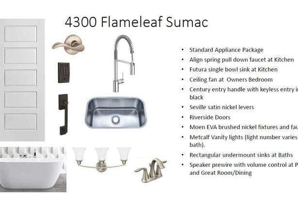 4300 Flameleaf Sumac DR