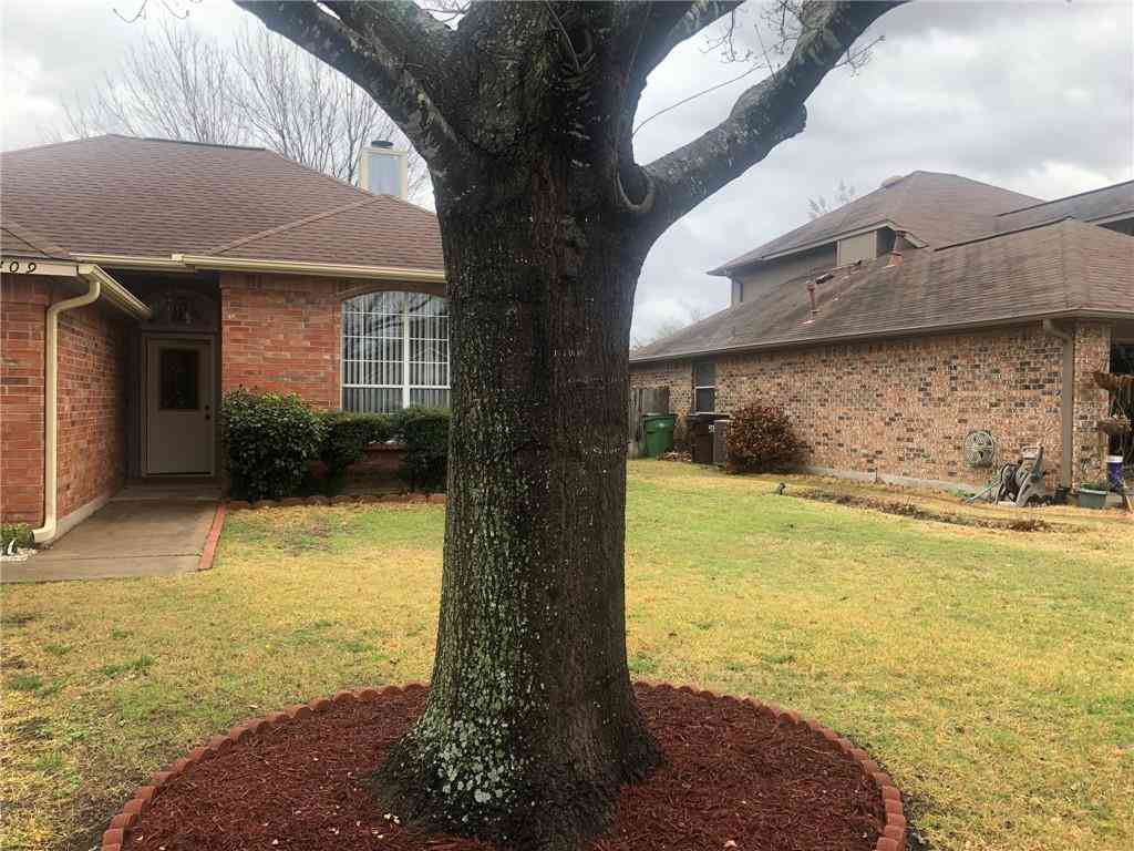 2409 Raintree PATH, Round Rock, TX, 78664,