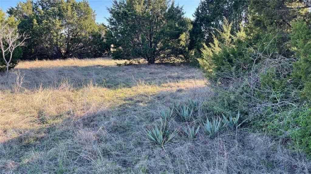 317 b County Road 229, Briggs, TX, 78608,