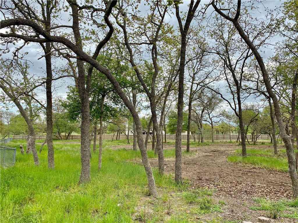 TBD County Road 229, Giddings, TX, 78942,