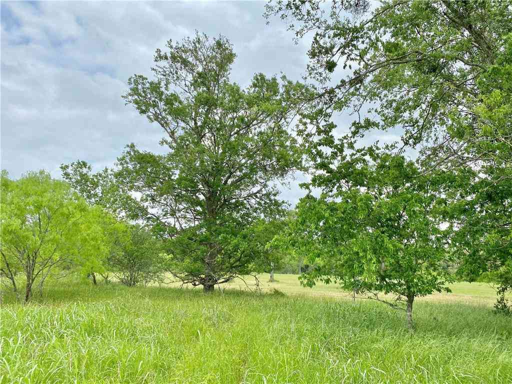 TBD S. Leon St (Tract 2), Giddings, TX, 78942,
