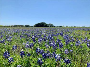 000 Fm 2340 (Site 2 & 3), Burnet, TX, 76550,
