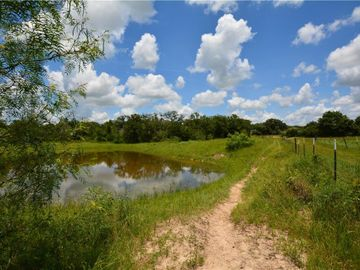 30 acres TBD County Road 331, Lexington, TX, 78947,