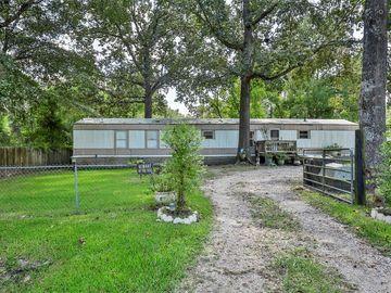 26442 Joy Village Drive, Splendora, TX, 77372,