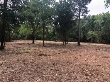 0 County Road 203, Liverpool, TX, 77577,