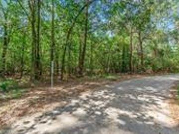 00 County Road 360 Moss Forest Drive, Splendora, TX, 77372,