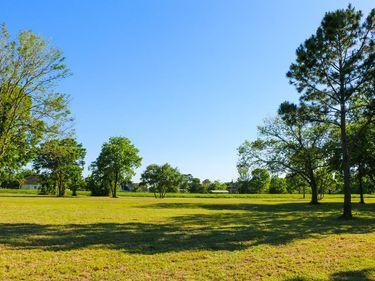 0 Mandale Road, Friendswood, TX, 77546,