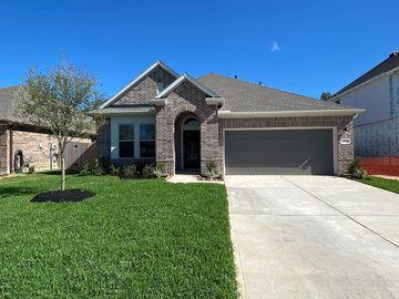 23843 Via Leoni Drive, New Caney, TX, 77357,