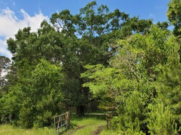#1 Welch Rd Road, Richards, TX, 77873,