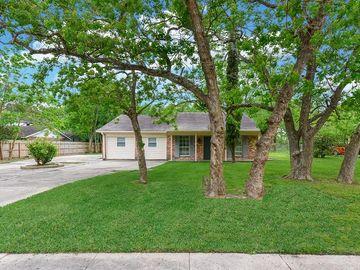 18610 Anne Drive, Webster, TX, 77058,