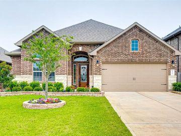 3927 Palmer Meadow Ct Court, Katy, TX, 77494,