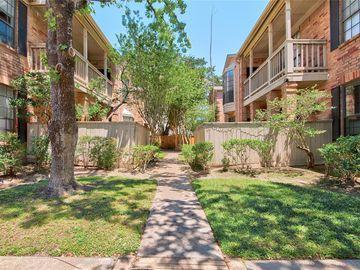 2255 Braeswood Park Drive #119, Houston, TX, 77030,