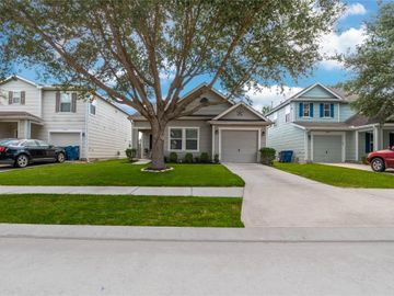 29318 Hickory Terrace Drive, Spring, TX, 77386,
