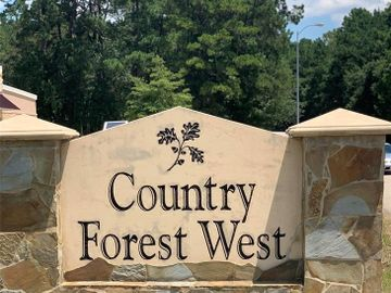 40900 Country Forest Drive, Montgomery, TX, 77534,