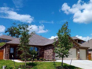 305 Nettle Tree Court, Conroe, TX, 77304,