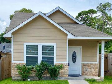 16904 W Ivanhoe, Montgomery, TX, 77316,