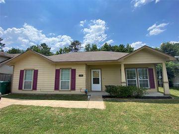 12995 Jayton Wood Way, Willis, TX, 77318,