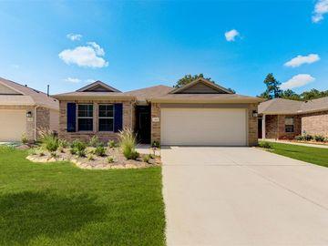 314 Wisteria Manor St, Magnolia, TX, 77354,
