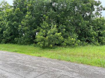0 Cowhide Road, Simonton, TX, 77485,