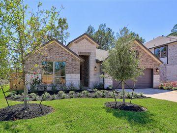 326 S Cadence Hills Loop, Willis, TX, 77318,