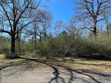 30803 Green Forest Drive, Magnolia, TX, 77354,