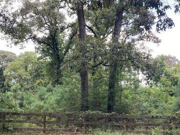 17510 Little Bough Lane, Magnolia, TX, 77354,