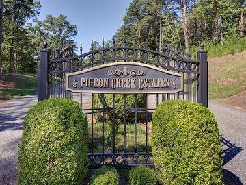 339 Stillwater Lane, Dawsonville, GA, 30534,