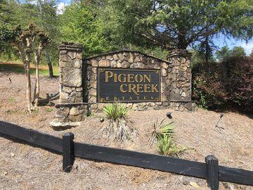 340 Pigeon Creek Drive, Dawsonville, GA, 30534,