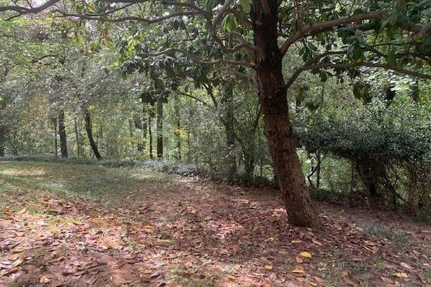 2912 Vinings Forest Way SE