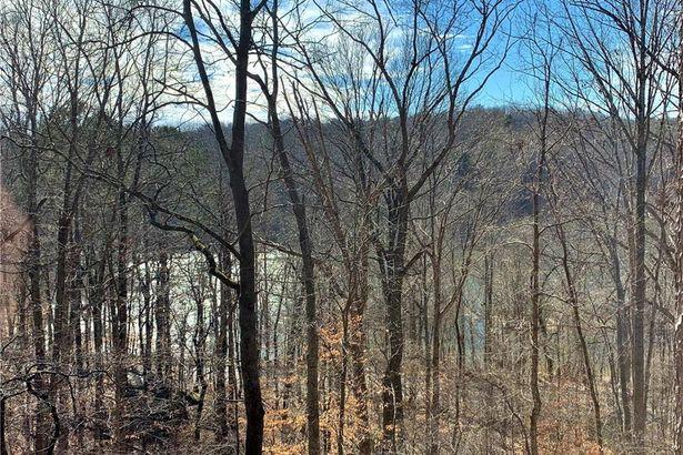 350 MARTINS Trail