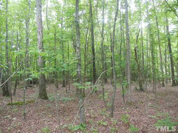 Lot # 24 Maple Springs Lane, Bear Creek, NC, 27207,