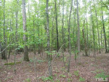 Lot # 24 Maple Springs Lane, Bear Creek, NC, 27207,