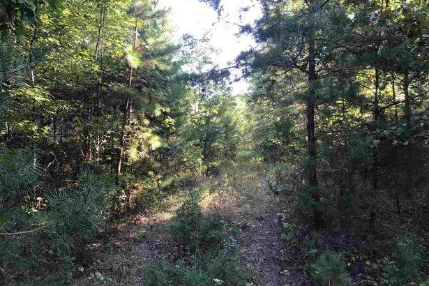 15.10 acres Old Allensville Road
