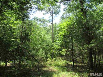 848 Dorcurt Hills Road, Pittsboro, NC, 27312,