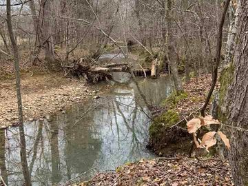 53-A Dorothy Brooks Lane, Roxboro, NC, 27574,