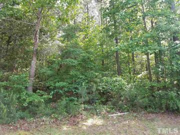 95 Old Hickory, Pittsboro, NC, 27312,