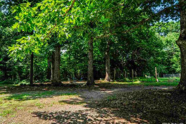 107 Log Cabin Trail