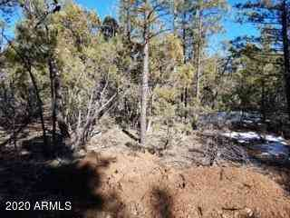 4410 W RIM Road #-, Lakeside, AZ, 85929,