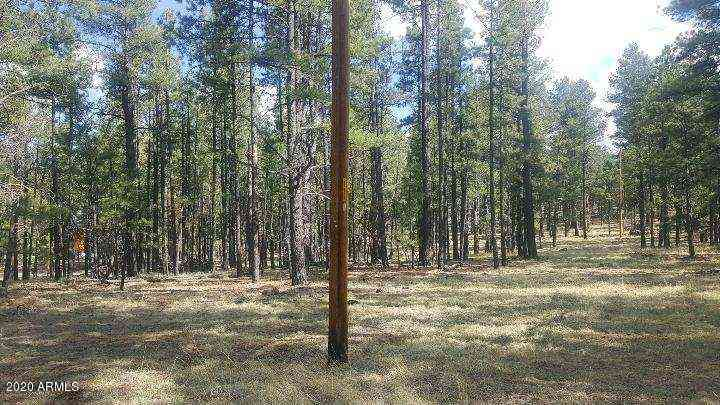 1027 North -- N #2, Greer, AZ, 85927,