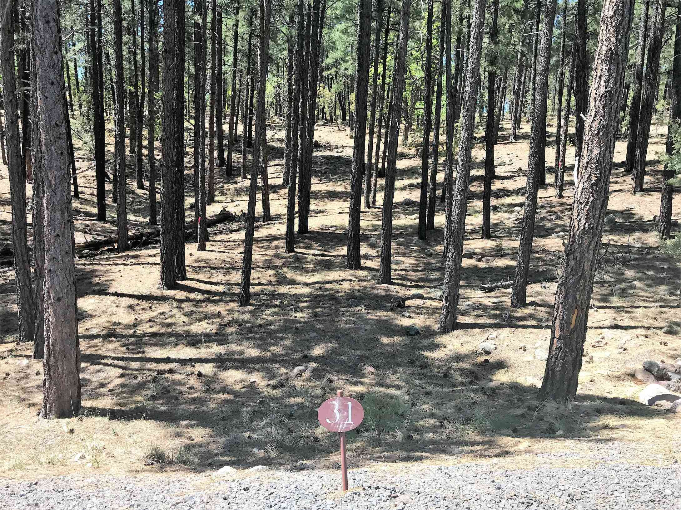 1037, 1035 Timbernook Crossing #31 and 32, Williams, AZ, 86046,