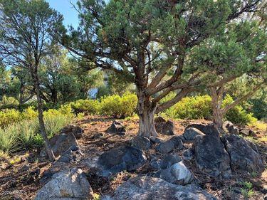 1105 S Sequoia Circle #30, Payson, AZ, 85541,