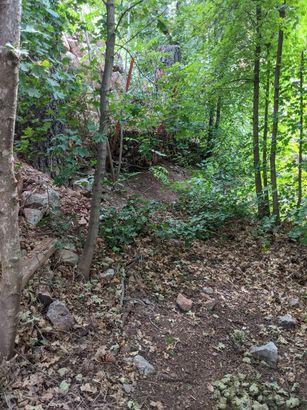 218 W Uphill Drive