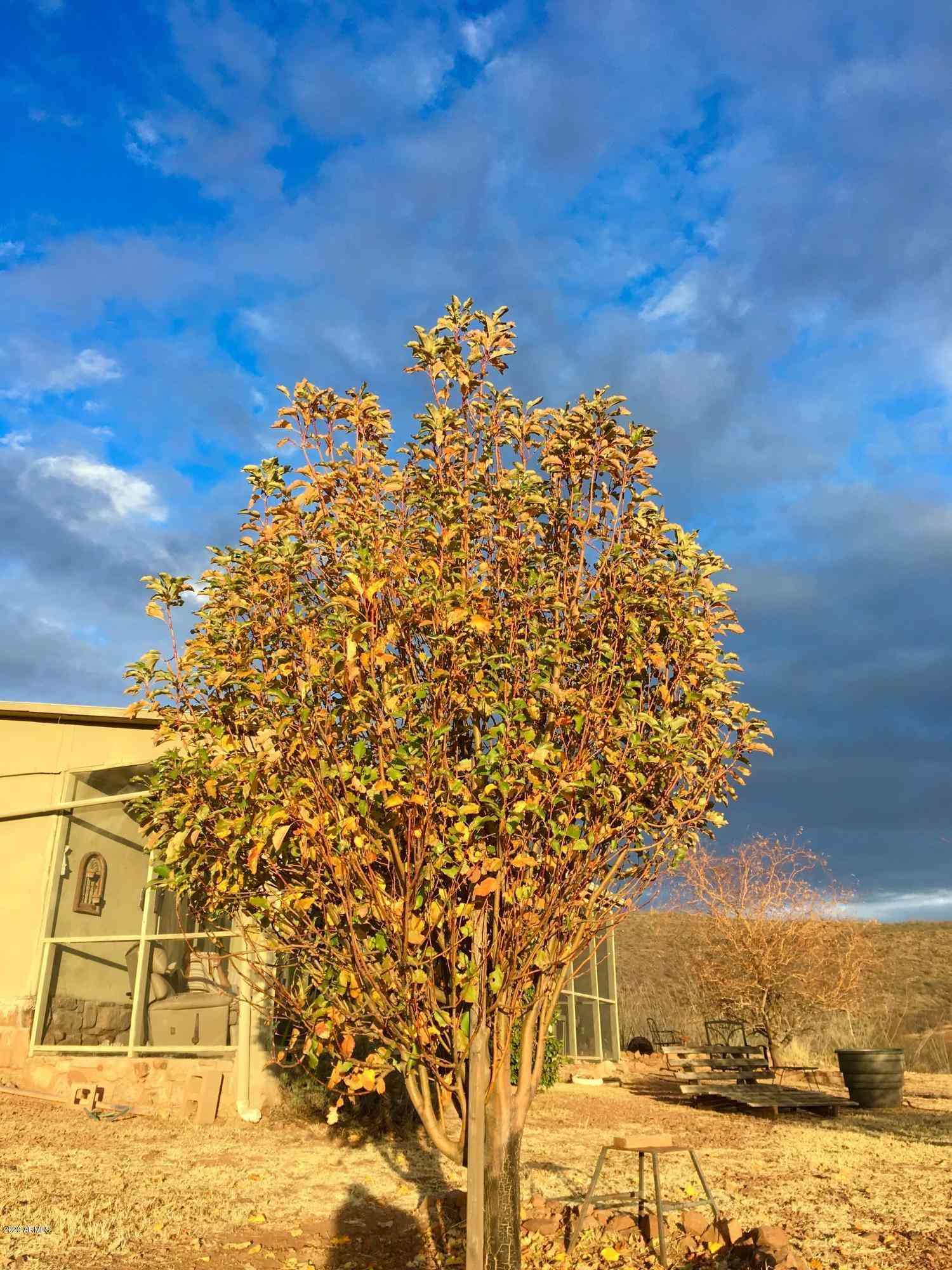 3837 S YORUBA BASIN Trail, Tombstone, AZ, 85638,