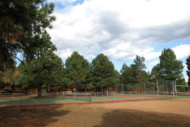 2718 High Pine Loop