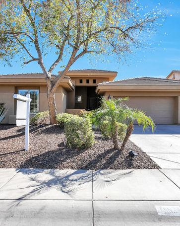953 E LODGEPOLE Drive Gilbert, AZ, 85298