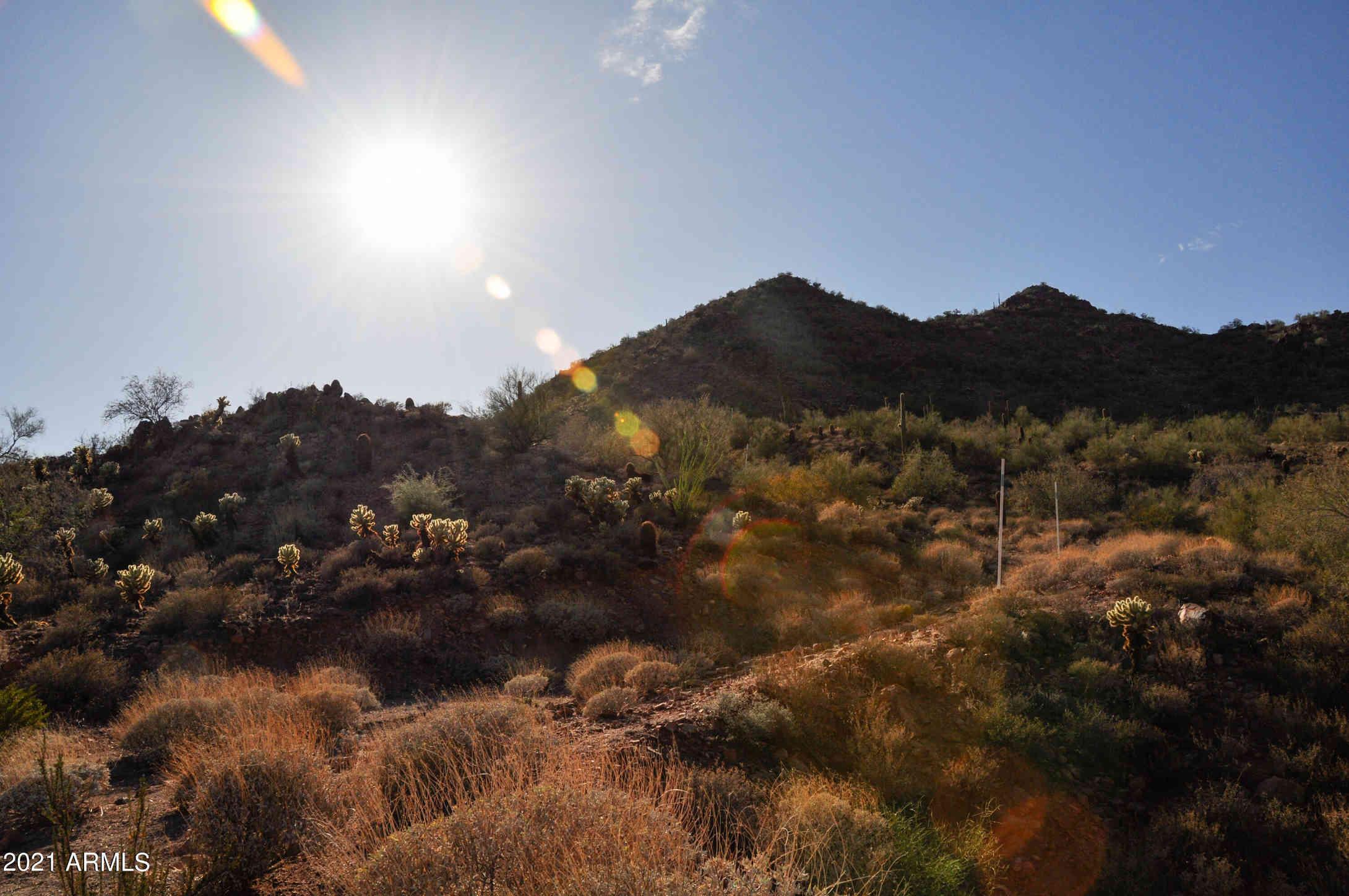 14452 E CORRINE Drive #181, Scottsdale, AZ, 85259,
