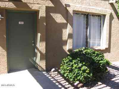 1224 E EVERGREEN Street #143, Mesa, AZ, 85203,