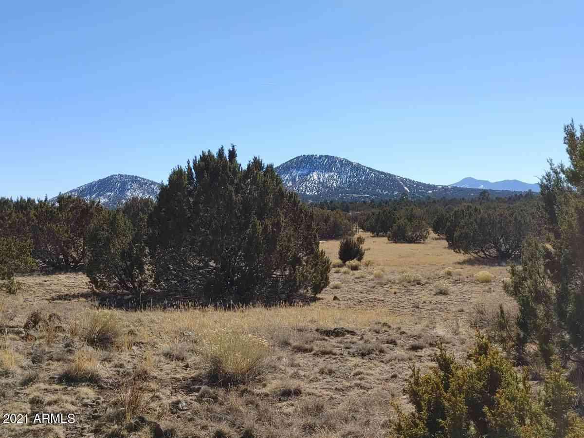 1317 E UTOPIA Trail #1, Williams, AZ, 86046,