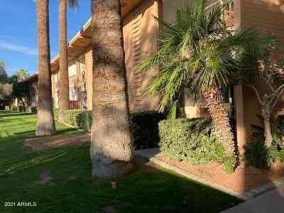 6125 E INDIAN SCHOOL Road #175, Scottsdale, AZ, 85251,
