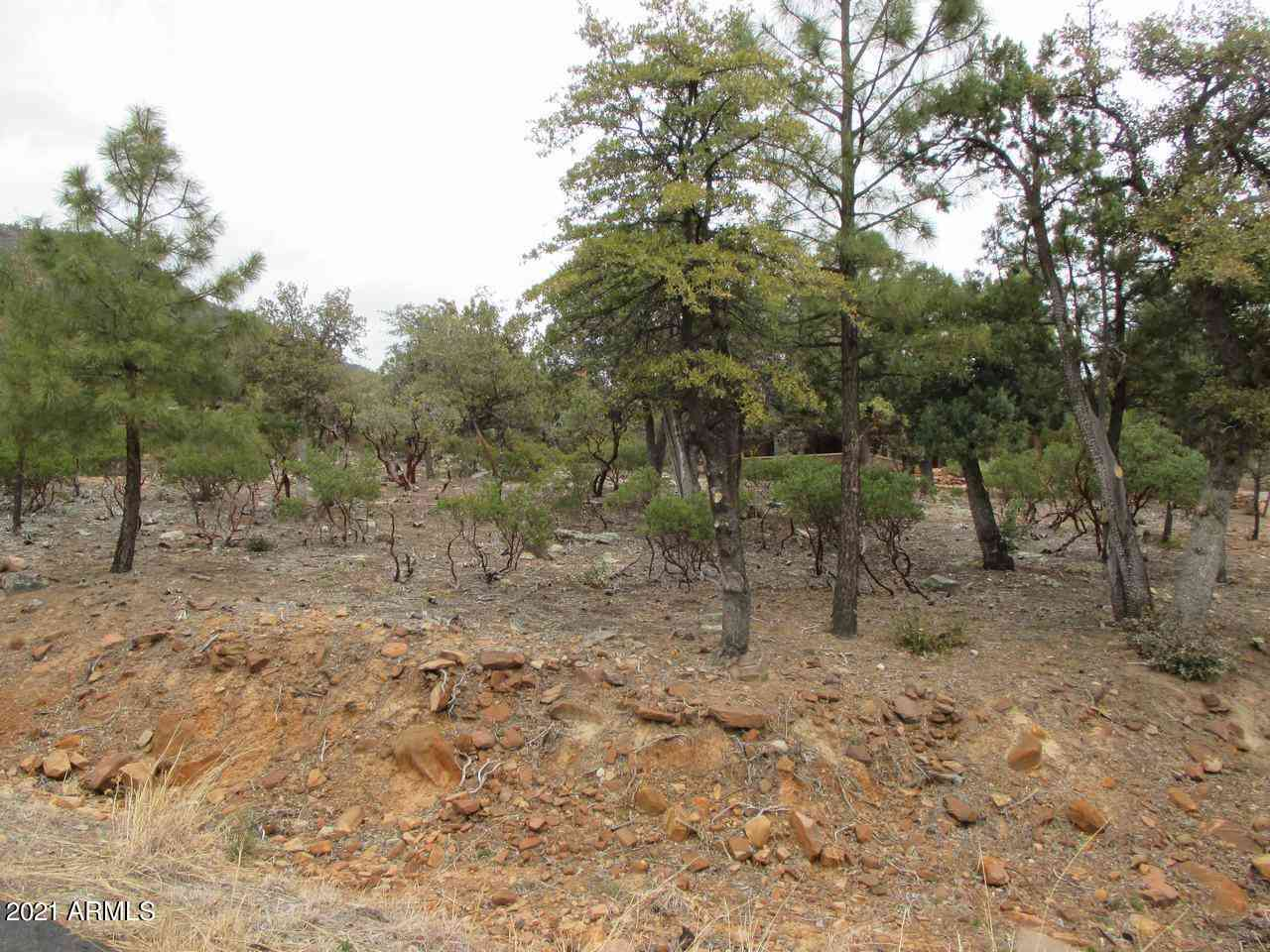 6530 W Ruin Hill Loop #150, Pine, AZ, 85544,